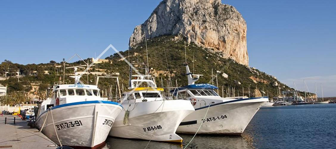 vissersboten in de haven van Calpe Costa Blanca